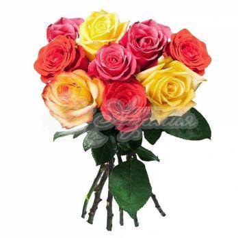Букет из 9 Эквадорских разноцветных роз